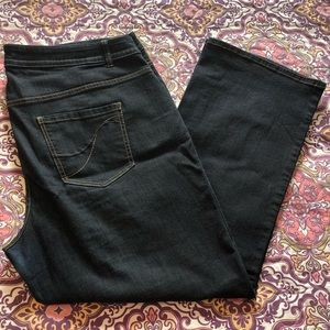Lane Bryant Genius Fit Bootcut Jeans